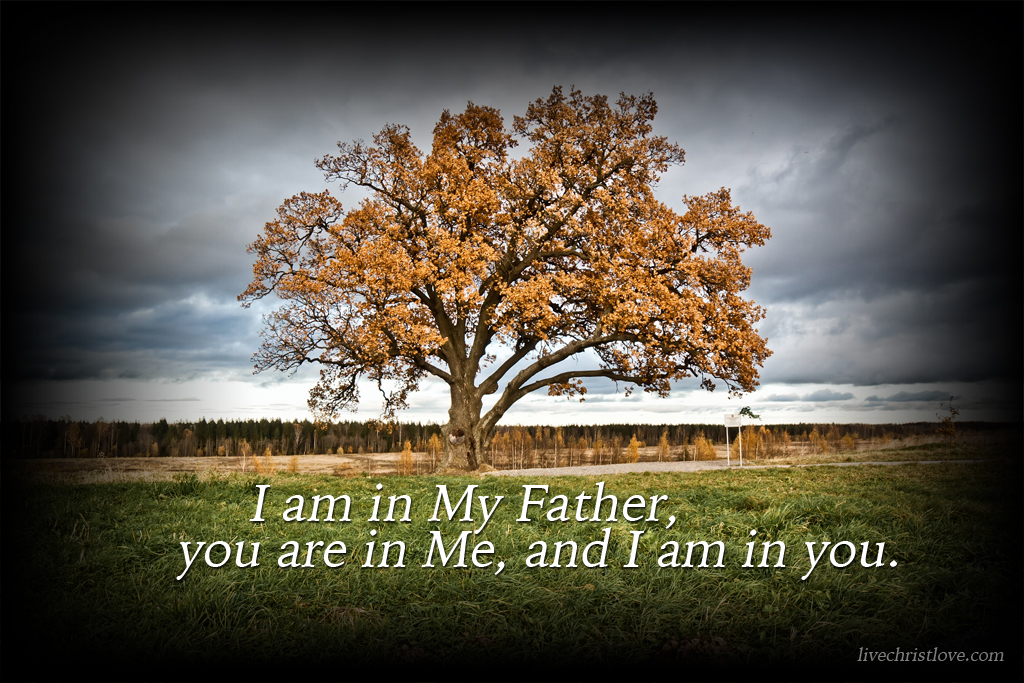 i-am-in-my-father